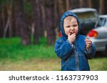 child eating on nature and cars ... | Shutterstock . vector #1163737903