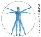 high resolution vitruvian human ... | Shutterstock . vector #116374369