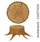 Cross Section Of Tree And Stum...
