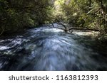 A Fast Flowing River In Waikat...