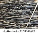 old and new grass. | Shutterstock . vector #1163844649