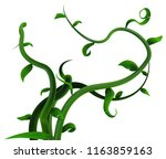 plant vines bunch green leaves  ... | Shutterstock . vector #1163859163