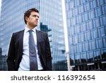 portrait of an handsome... | Shutterstock . vector #116392654