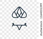 bikini vector icon isolated on... | Shutterstock .eps vector #1164031399