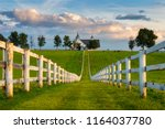 Horse Farm, Kentucky Bluegrass