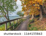 Wooden Pathway Or Footpath Near ...