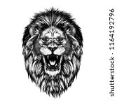 hand drawn sketch of lion head... | Shutterstock .eps vector #1164192796
