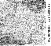black and white grunge... | Shutterstock .eps vector #1164285853