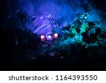 three fantasy glowing mushrooms ... | Shutterstock . vector #1164393550