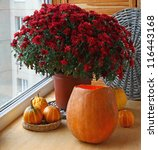 Bunch of red chrysanthemums and pumpkins on a balcony. - stock photo