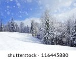 beautiful winter landscape with ... | Shutterstock . vector #116445880