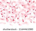 apple flower flying petals... | Shutterstock .eps vector #1164461080