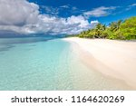 exotic beach background. summer ... | Shutterstock . vector #1164620269