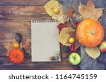autumn background  pumpkins ... | Shutterstock . vector #1164745159