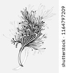 decorative  feather in zen... | Shutterstock .eps vector #1164797209