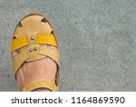 woman leg in the brown leather...   Shutterstock . vector #1164869590