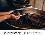 freshly roasted coffee beans... | Shutterstock . vector #1164877900