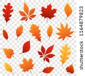colorful autumn falling leaves... | Shutterstock .eps vector #1164879823