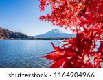 colorful autumn season and... | Shutterstock . vector #1164904966