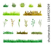 set of various plant elements ... | Shutterstock . vector #1164922909