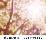 golden heaven purple light and... | Shutterstock . vector #1164995566