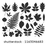 leaf silhouette. isolated leaf... | Shutterstock .eps vector #1165046683