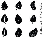 leaf icon set | Shutterstock .eps vector #1165072606