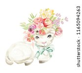 cute watercolor sheep with tied ... | Shutterstock . vector #1165094263