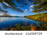 Forest Lake In Autumn