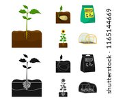 company  ecology  and other web ... | Shutterstock .eps vector #1165144669