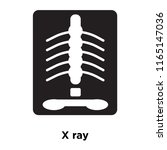 x ray icon vector isolated on... | Shutterstock .eps vector #1165147036