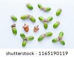 green acorns on white... | Shutterstock . vector #1165190119