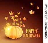 vector beautiful halloween... | Shutterstock .eps vector #116520760