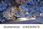 fabulous winter forest in the... | Shutterstock . vector #1165269673