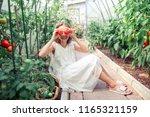 adorable little girl harvesting ...   Shutterstock . vector #1165321159