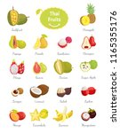 thai fruits set of lush food... | Shutterstock .eps vector #1165355176