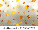autumn falling red  yellow ... | Shutterstock .eps vector #1165365259