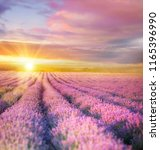 sunset sky over a violet... | Shutterstock . vector #1165396990