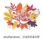 hello autumn. hand drawn... | Shutterstock .eps vector #1165418149