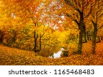 autumn forest lake landscape.... | Shutterstock . vector #1165468483