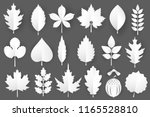 white paper cut autumn leaves... | Shutterstock .eps vector #1165528810