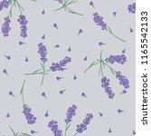 lavender flower seamless... | Shutterstock .eps vector #1165542133
