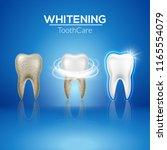 tooth clean 3d health. dental...   Shutterstock .eps vector #1165554079