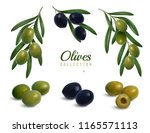 set of realistic branches of... | Shutterstock .eps vector #1165571113