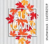 vector frame with colored... | Shutterstock .eps vector #1165582519