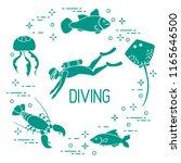 diver  jellyfish  lobster ... | Shutterstock .eps vector #1165646500