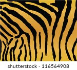 Tiger Background Animal Texture.