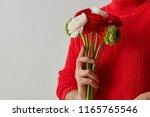 red  green  white flowers of... | Shutterstock . vector #1165765546