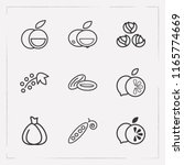 set of fruit icons line style... | Shutterstock .eps vector #1165774669