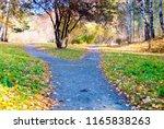 gravel foot path crossroad in... | Shutterstock . vector #1165838263